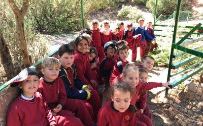 Visita a la granja escuela Pla de Estivella de los alumnos de segundo de Primaria